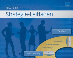 Strategie-Leitfaden_Furger_web